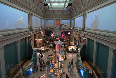Oceans exhibit area of the Museum of Natural History, Washington, DC