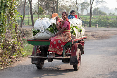 A woman laughs as she rides on a tricycle transporting spinach in the East Kolkata Wetlands near Dhapa, Kolkata, India.