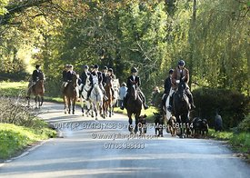 Kent and Surrey Bloodhounds Meet at the Surrey Oaks in Newdigate on Sunday 9th Nov 2014.