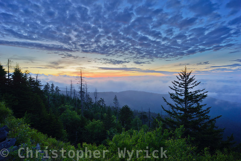 Views from Clingman's Dome