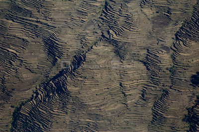 Aerial view of terraced fields, Himalayan foothills, Nepal, November 2007