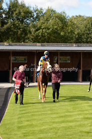 11th October 2013 - Juvenile Hurdle with winner Harristown