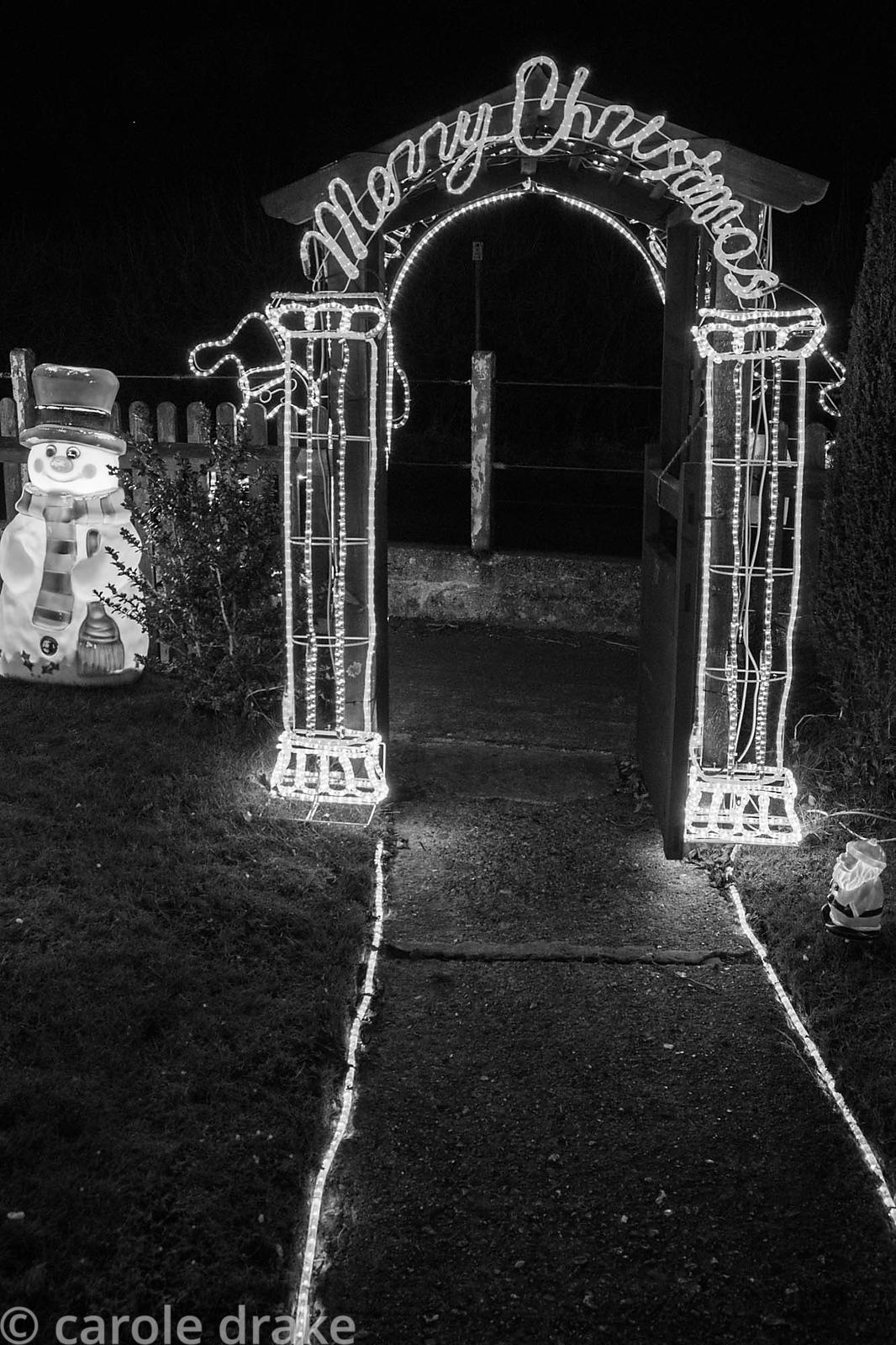Illuminated Christmas garden.