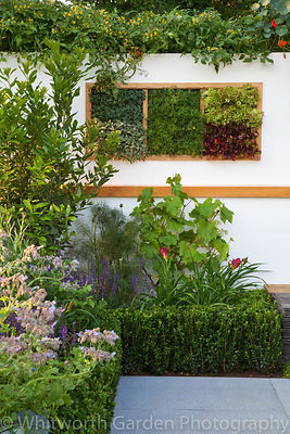 The Potential Feast garden designed by Raine Clarke-Wills & Fiona Godman-Dorington at the RHS Hampton Court Flower Show 2011....