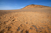 Fairy circle, mysterious circle without vegetation. Desert landscape, Kunene region, Kaokoland, Namibia