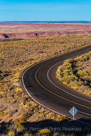 Curving Park Road in Petrified Forest National Park