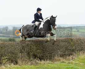 Sophie Brown jumping a hedge at Wilson's - The Cottesmore Hunt at Manor Farm
