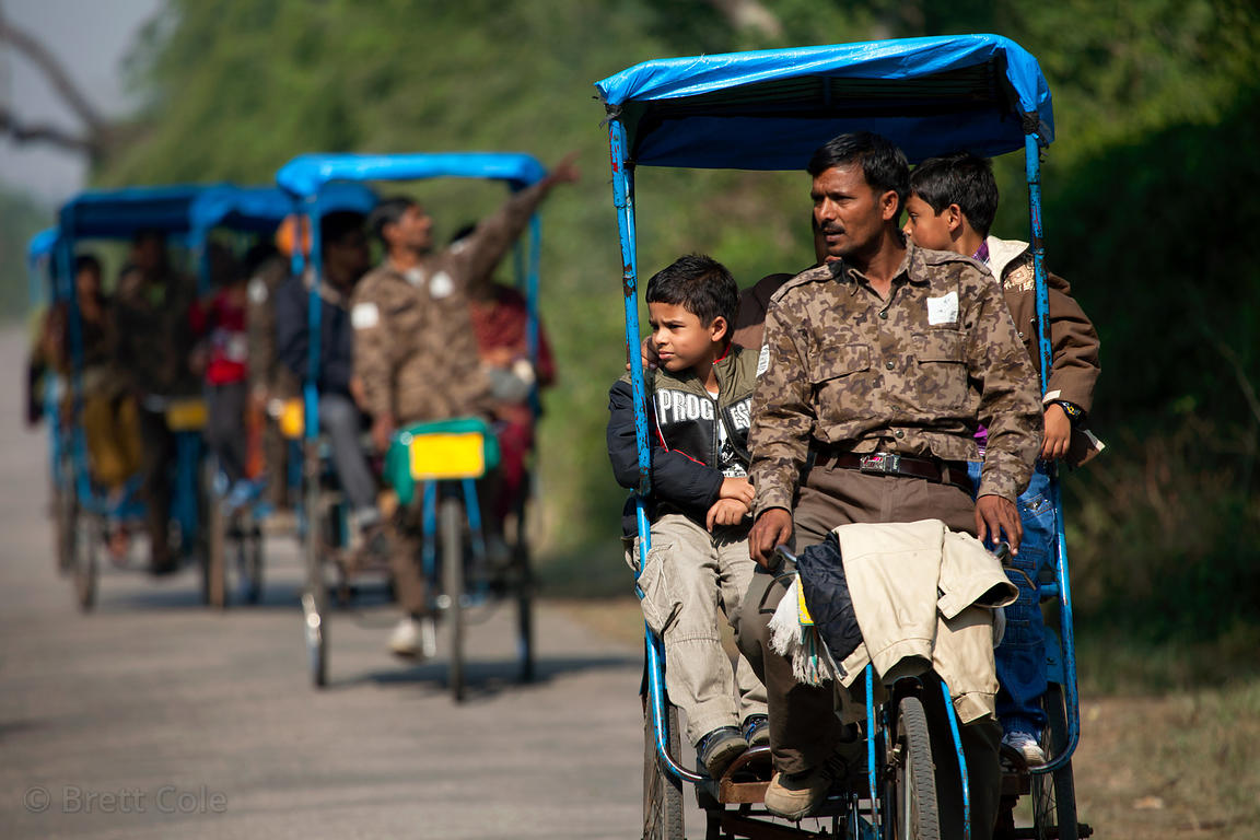 Rickshaw drivers transport tourists in Keoladeo National Park, Bharatpur, India
