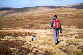 A hiker and their dog walking off the summit of Carrock Fell in the Caldbeck Fells, English Lake District, UK.