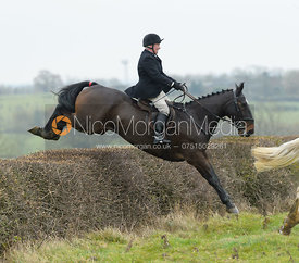 Mike Chatterton jumping a hedge at Wilson's - The Cottesmore Hunt at Manor Farm