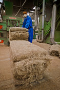 Hemp straw processing