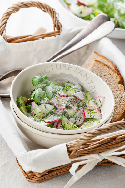 Salad with radishes and cucumbers