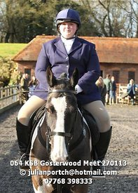064_KSB_Gosterwood_Meet_270113