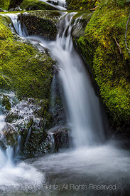 Tiny Waterfall in Grand Valley in Olympic National Park