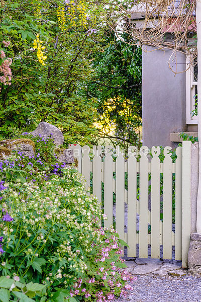 The Welcome gate giving access to the front garden at Caher Bridge Garden, Fanore, Ireland with astrantias and hardy geranium...