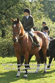 097_KSB_Capel_Hound_Exercise_071012