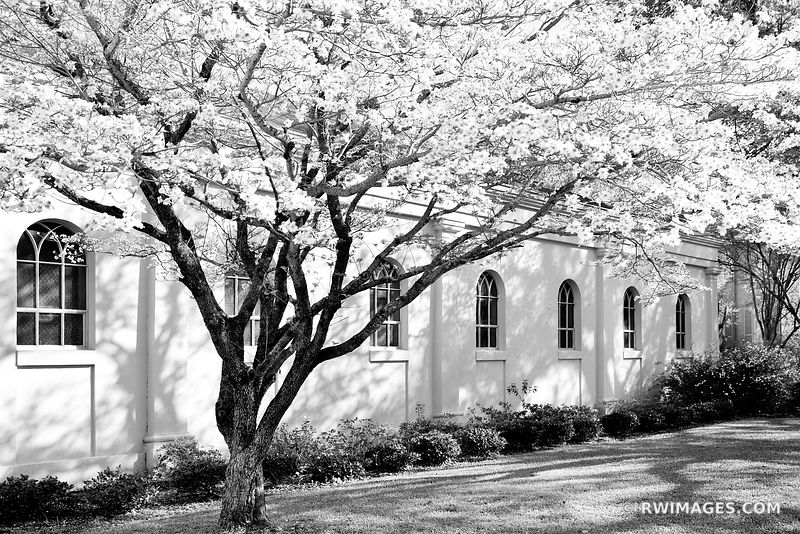NATCHEZ MISSISSIPPI BLACK AND WHITE