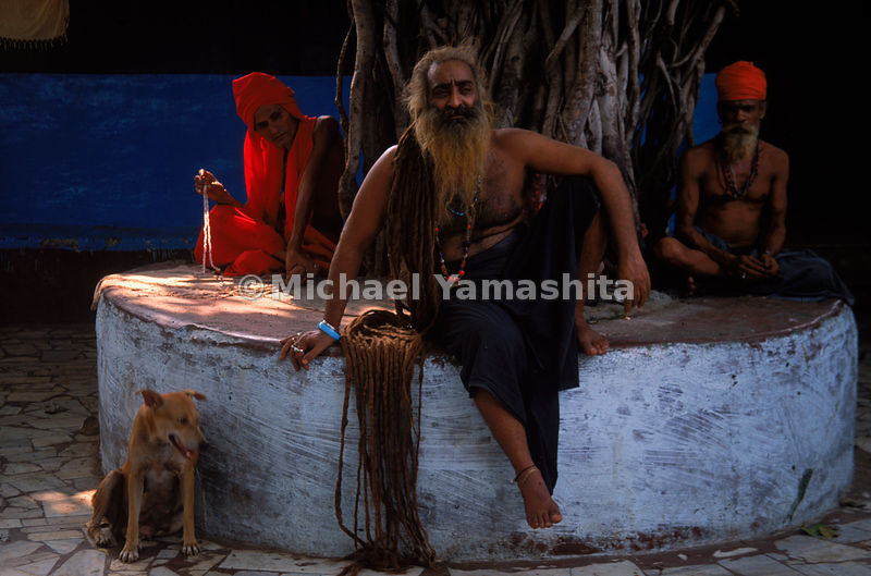 A sadhu in Mumbai, India.  The hair of these holy men sometimes grows to 12 feet or even longer.