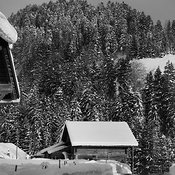 Gstaad_1361