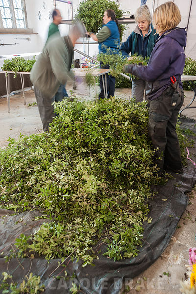 Volunteers prepare swags of pittosporum in the Great Hall, ready for attaching to the rope that forms the central core of the...