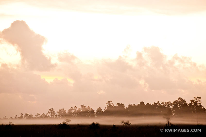 MORNING MIST EVERGLADES NATIONAL PARK FLORIDA
