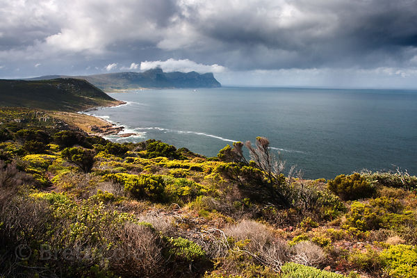 Spectacular view looking North towards Simon's Town from Rooikrans, Cape Peninsula, South Africa, an emblematic image of the ...