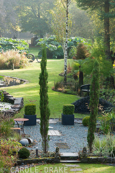 Garden made in a boggy valley amongst mature trees features pencil cypresses, Cupressus sempervirens, acers, shaped rhododend...