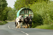 Horse drawn caravan on the road heading to Appleby horse fair. On A683 betwen Sedbergh and Kirkby Stephen