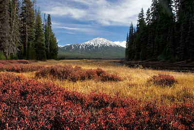 Autumn colors around Sparks Lake, with Mount Bachelor in the distance, Oregon Cascades.