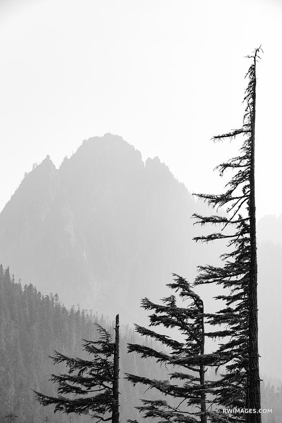 MOUNT RAINIER NATIONAL PARK WASHINGTON BLACK AND WHITE VERTICAL