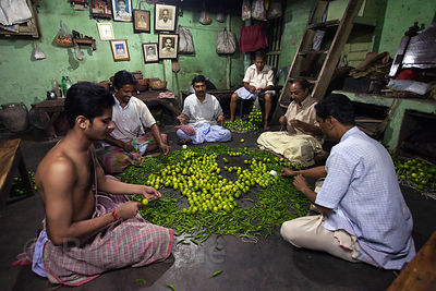 Workers string limes and peppers, which are used as a sort of good luck charm, at a shop in Kalighat, Kolata, India.6