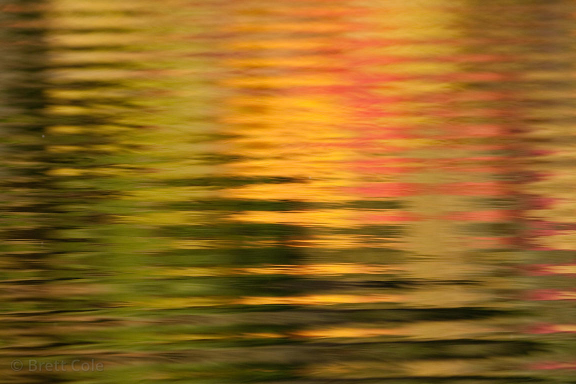 Autumn reflections in a pond in the Adirondack Mountains, New York