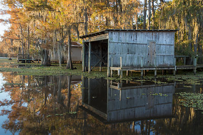 Boat House From Shady Glade