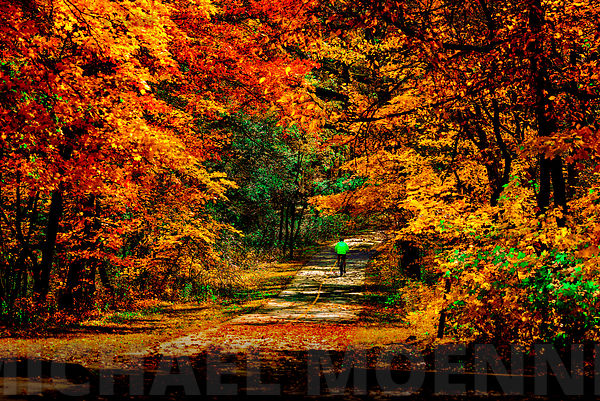 D81_5856_Fall_2016_2_sRGB_Photodeck