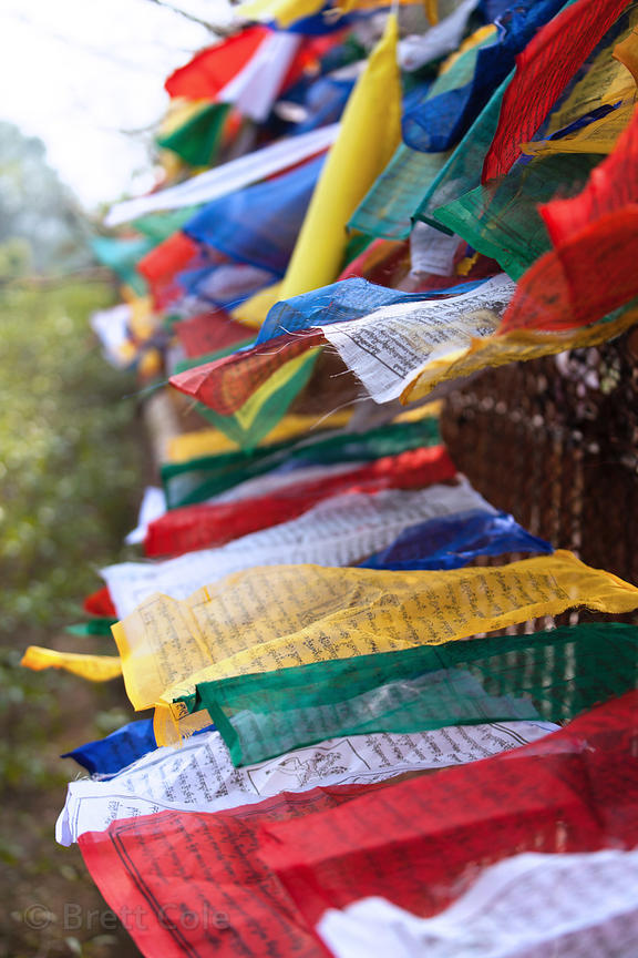 Buddhist prayer flags near the Dhamekh Stupa, Sarnath, India.