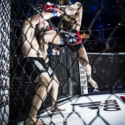19092015CageEncounter4_DSC3377