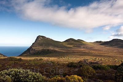 Patry's Valley, Cape Peninsula, South Africa