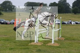 Aske HOrse Trials 2