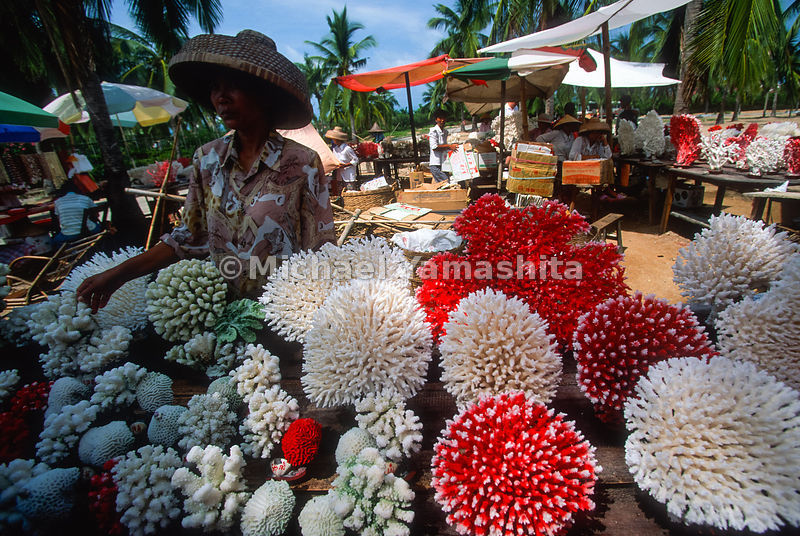 Coral that has been cleaned and died is sold to tourists. Many reefs are being destroyed to gather corals..Sanya Market.Haina...