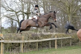 bedale_hunt_ride_8_3_15_0052