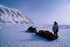 An Eskimo with a polar bear he just shot, Little Diomode Island in the Bering Strait , Alaska