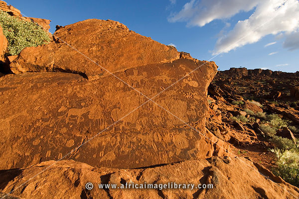 Twijfelfontein rock art, ancient engravings, Southern Damaraland, Namibia