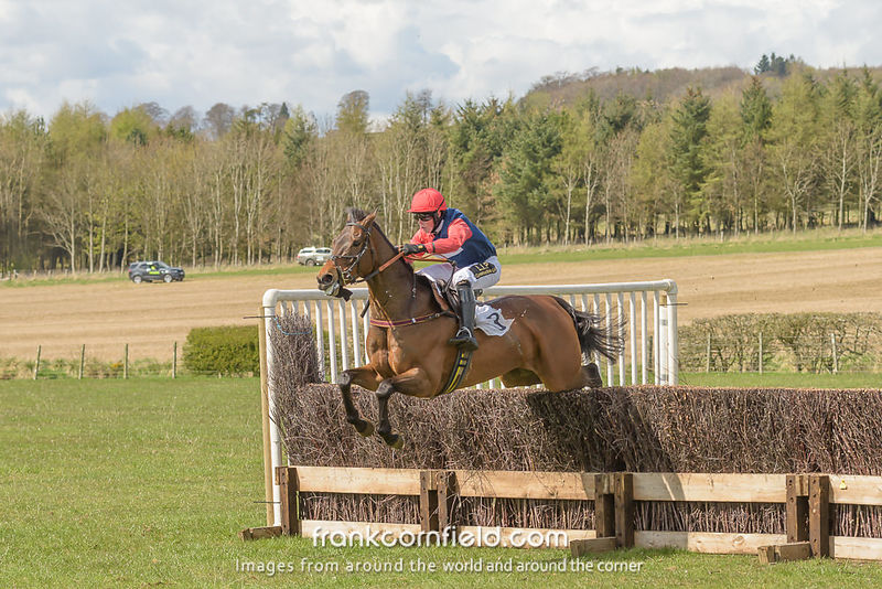 LEVEN, SCOTLAND - APRIL 28, 2018:  Cameron Wadge winning the Turcan Connell Fife Foxhounds and NAPP Conditions Race. on Chanceiton.