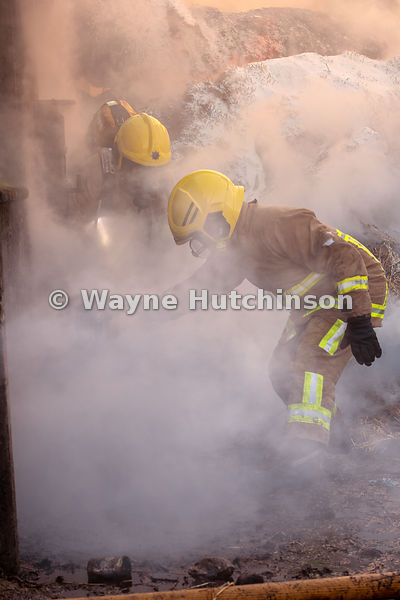 Fire fighters rescuing sheep from a burning barn, Cumbria, UK.