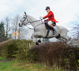 Robert Medcalf jumping the first hedge - Barleythorpe
