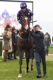 Nelson_River_winners_enclosure_15122018-3