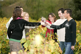 Photo de degustation de vin dans le vignoble