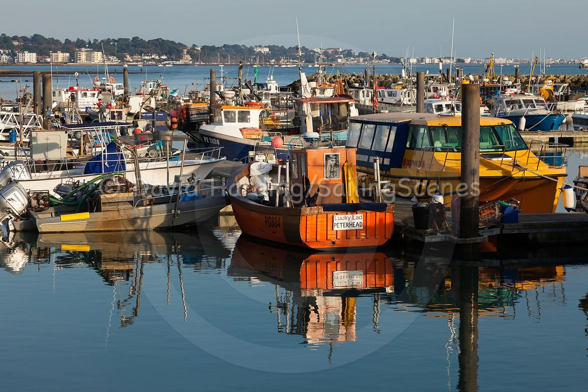 Fisherman's Dock, Poole