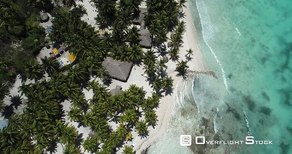 Caribbean beach and palm trees. Flight overhead . Saona Island, Dominican Republic