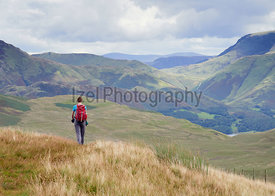 A female hiker walking off the summit of Great Borne towards Loweswater Fell in the English Lake District, UK.
